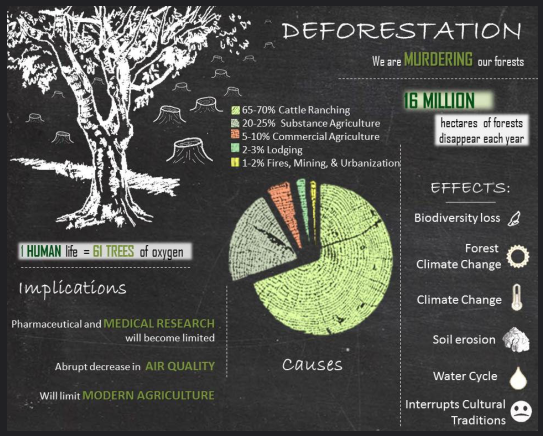Infographic with statistics about deforestation